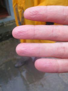 Russinfingrar efter en väldigt regnig dagsmarsch.